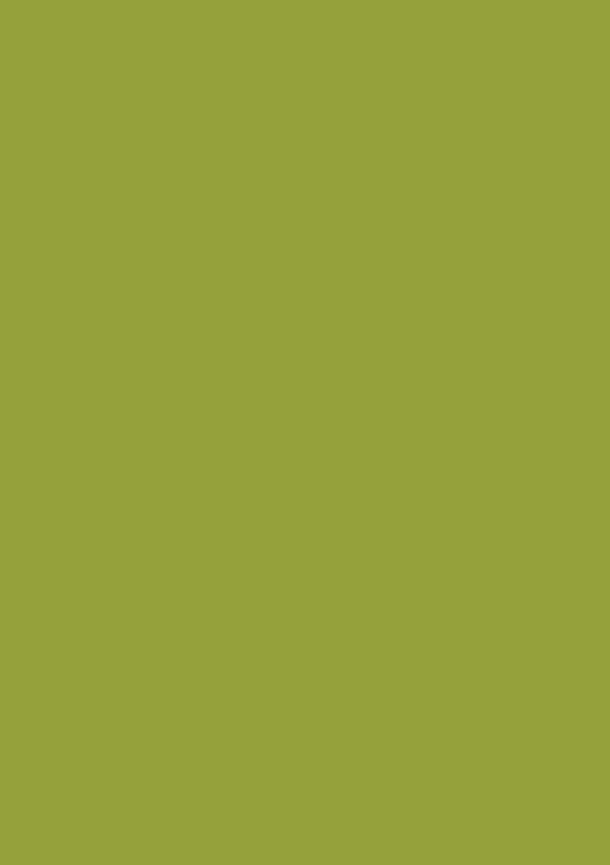 Пленка ПВХ Оливка глянец